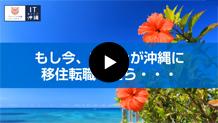 沖縄に移住・転職したくなる理由はここにある!